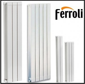 poza Elementi aluminiu FERROLI H 1600